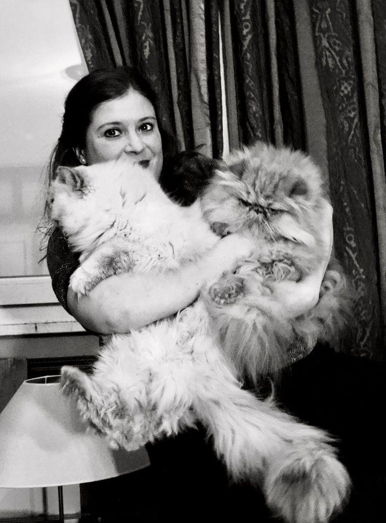 avis sur les souribambelle et portrait de Gégène the cat