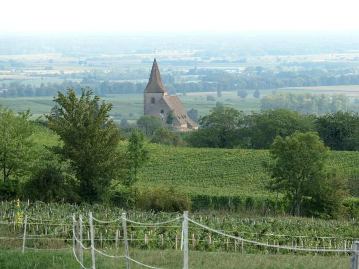 Alsace à vélo