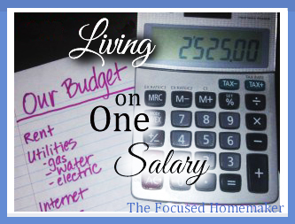 Living On One Salary