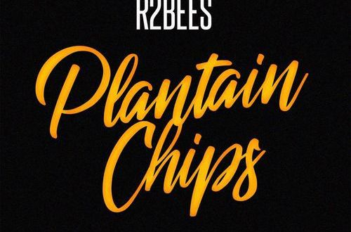 Image result for r2bees plantain chips