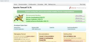 AWS EC2にTomcatをインストールする方法