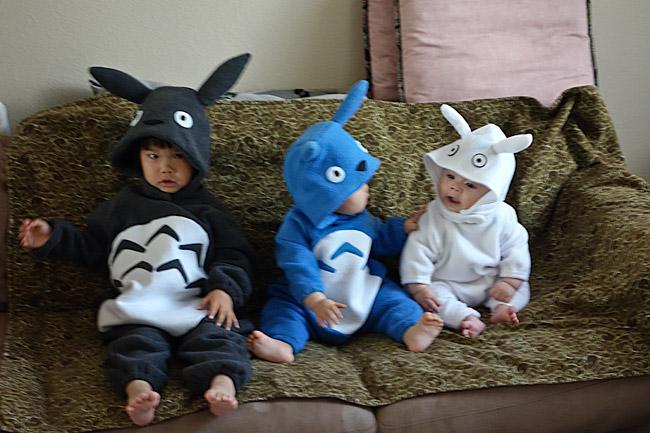 Totoro Kid Costumes