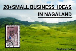 20+ Small Business Ideas In Nagaland In 2021