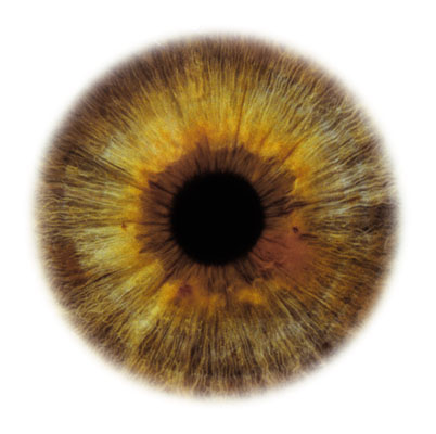 Eye Scapes - 03