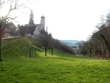 Schloss Birseck, and part of Arlesheim behind the hill