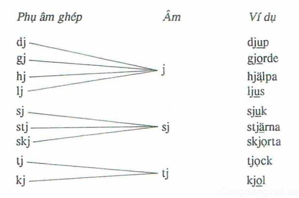 Phụ âm ghép có j và phát âm bằng một âm