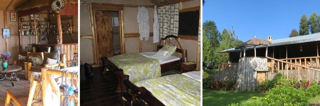 gorilla-mist-camp-accommodation-in-uganda