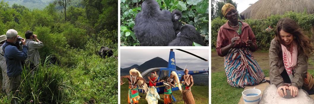gorilla-trek-ibwicyu-rwanda