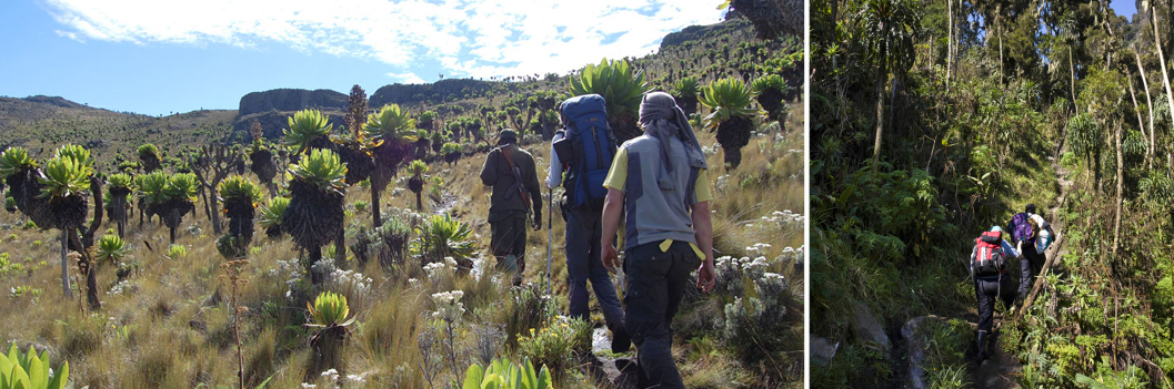 hiking-mountain-rwenzori