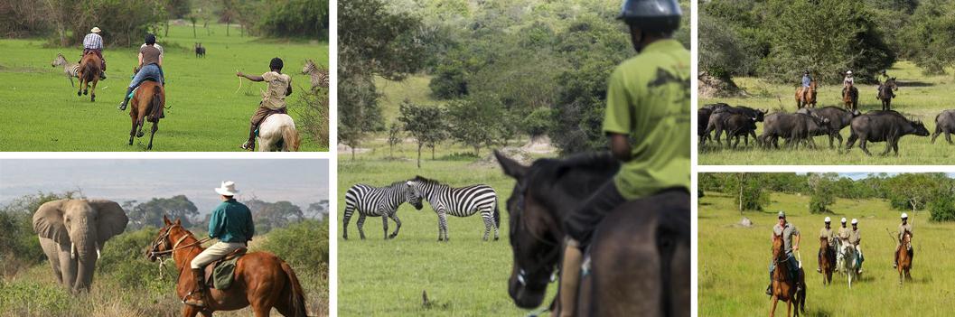 horseback-muhingo-lodge