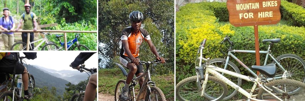 mountain-biking-bwindi