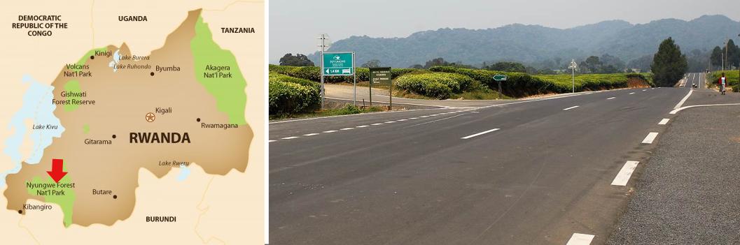 roads-to-nyungwe