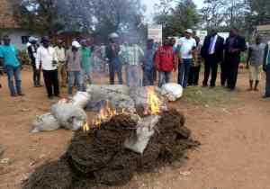 RDC/Beni: 8 sacs de chanvre et des boissons fortement alcoolisées prohibées incinérés