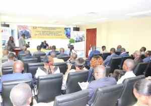 Projet CAB-Congo: 8,4 milliards de FCFA pour la poursuite de l'interconnexion des Etats et l'appui aux institutions