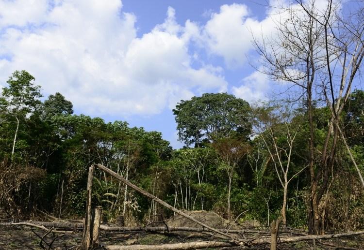 RDC/Maï-Ndombe: 890 personnes tuées en 3 jours à Yumbi !