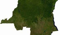 Agriculture : moteur de croissance et faible distributeur de revenus. Quelle passe pour le changement vanté? (Par Célestin Ngoma Matshitshi, analyse)