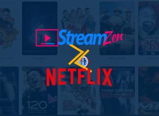 Netflix vs Streamzen