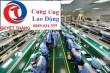 dịch vụ cho thuê lao động thời vụ