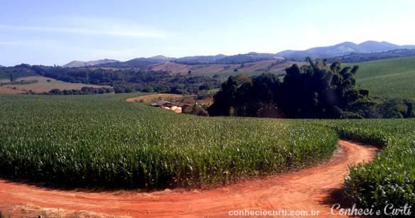 Sul de Minas.