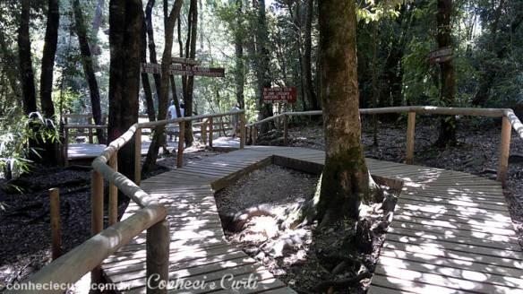 Ojos del Caburgua, trilhas para acesso aospoços naturais. Pucón - Chile.