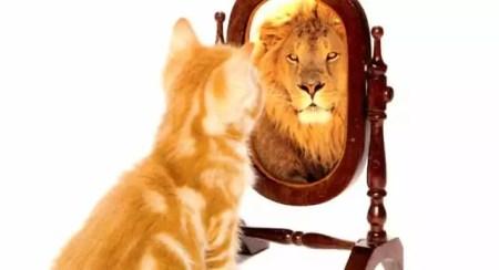 voce e imagem e semelhanca de deus - Você é Imagem e Semelhança de Deus