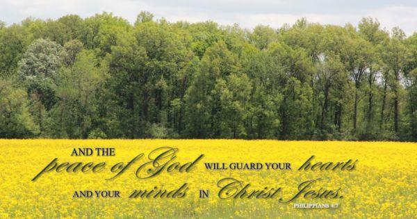 Peace Of God Image