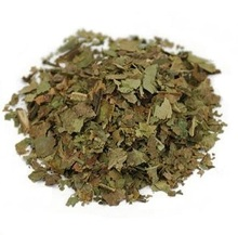 Black Walnut Leaf in Herbs at Conjure Work, Hoodoo supplies by Magus (Kevin Trent Boswell)