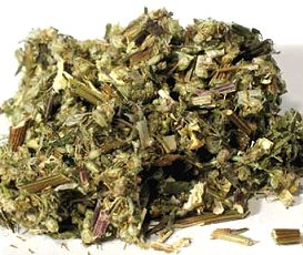 Mugwort, Artemesia vulgaris, dreams, projection, at Conjure Work, herbs, magick, Golden Dawn, Solomonic, sorcery