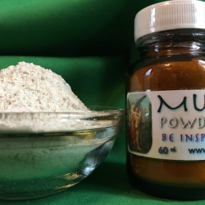 Muse Powder at Conjure Work, Pagan supplies and services, tarot, astrology, spells and Hoodoo products by Magus (Kevin Trent Boswell)