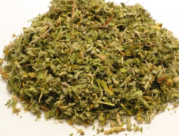 Damiana Leaf, Turnera diffusa at Conjure Work, sorcery supplies services, witchcraft Hoodoo products high magick