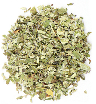 Yerba_Santa_Eriodictyon_califonicum_holy_herb_conjurework.com_occult_supplies_services_hoodoo_witchcraft_products_Magus