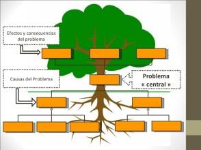 arboldeproblemasclase2 3 728 - Del árbol de problemas me quedo con las raíces