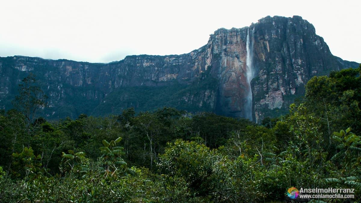 Salto Angel - Auyantepui - Venezuela
