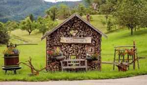 Paisaje de la Selva Negra - Alemania