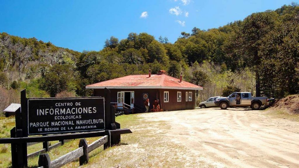 Parque Nacional Nahuelbuta - Chile - Foto: Archivo fotográfico CONAF