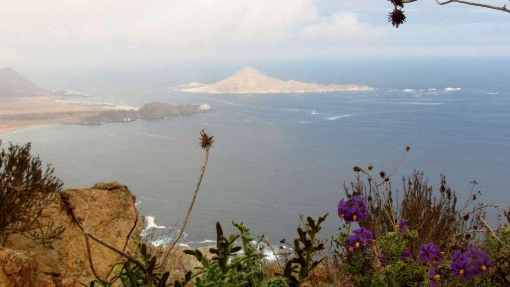 Parque Nacional Pan de Azucar - Chile - Foto: Archivo fotográfico CONAF