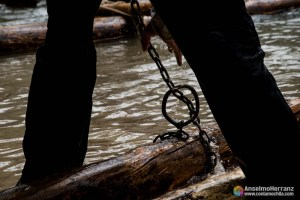 Ganchero Atando Troncos Para Sacar los Del Río