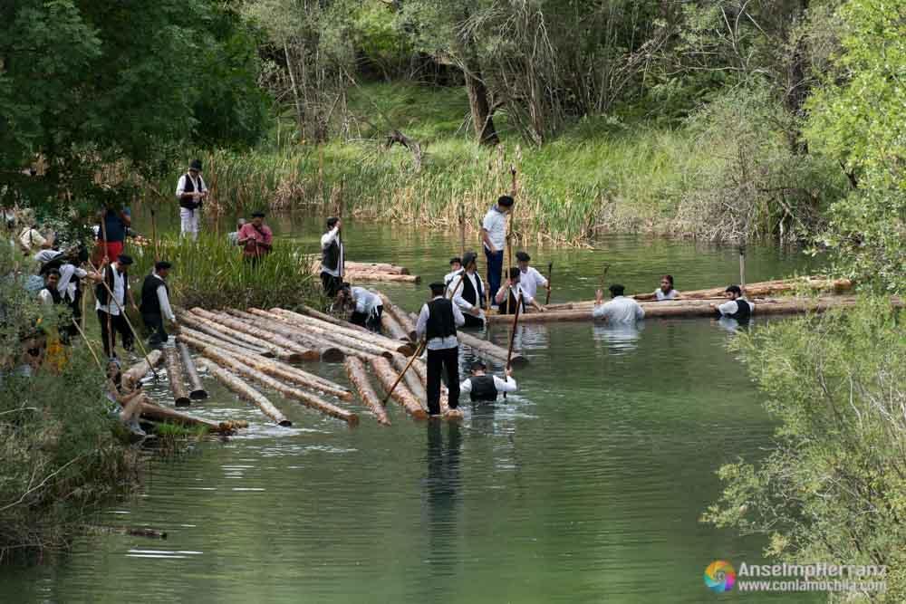 Gancheros del Alto Tajo colocando troncos en el río