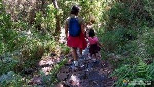 Bajando las Escaleras de la Levada 25 Fontes - Madeira