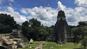 Piramide de Tikal - Guatemala