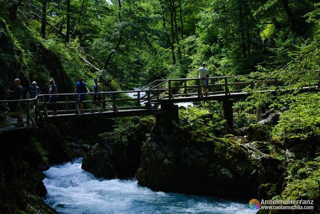 Puente de madera - Vintgar Gorge.
