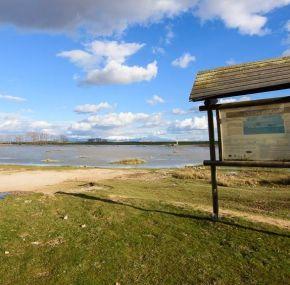 Observación de aves en las lagunas de Laguna Rodrigo – Segovia