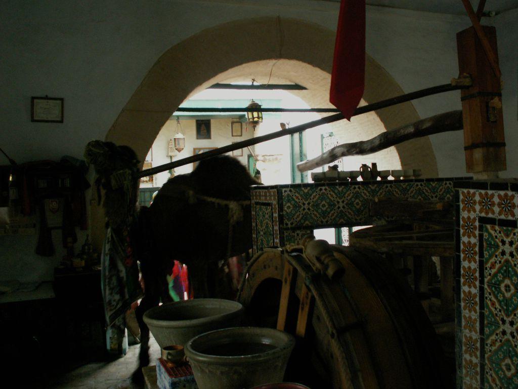Interior de la cúpula en la que se encuentran la noria y el camello de Bir Barrouta - Kairouan - Túnez