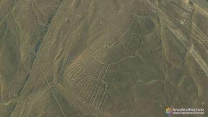 Manos - Líneas de Nazca - Perú
