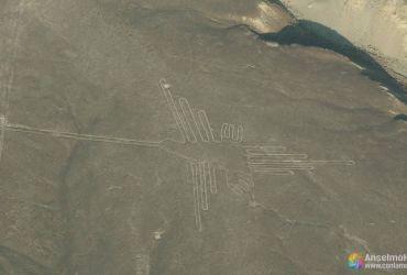 Colibrí - Lineas de Nazca - Perú