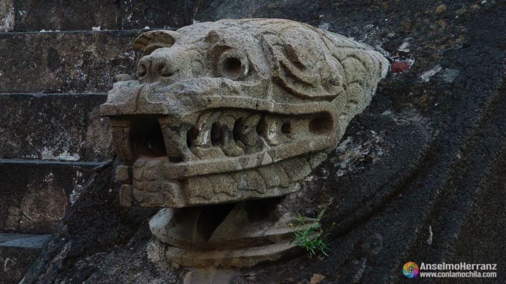 Jaguar a los pies de la escalinata de la Pirámide de Quetzalcóatl - México