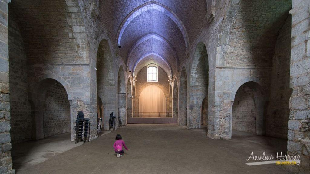 Foto interior de la Nave principal de la iglesia de la Abadía de Escaladieu - Francia