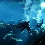 Buceadores en el cenote Chac Mool - Quintana Roo - México