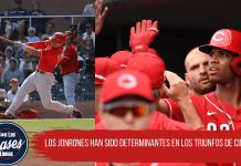 Rojos Spring Training