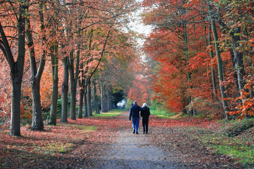 Couple walking Autumn